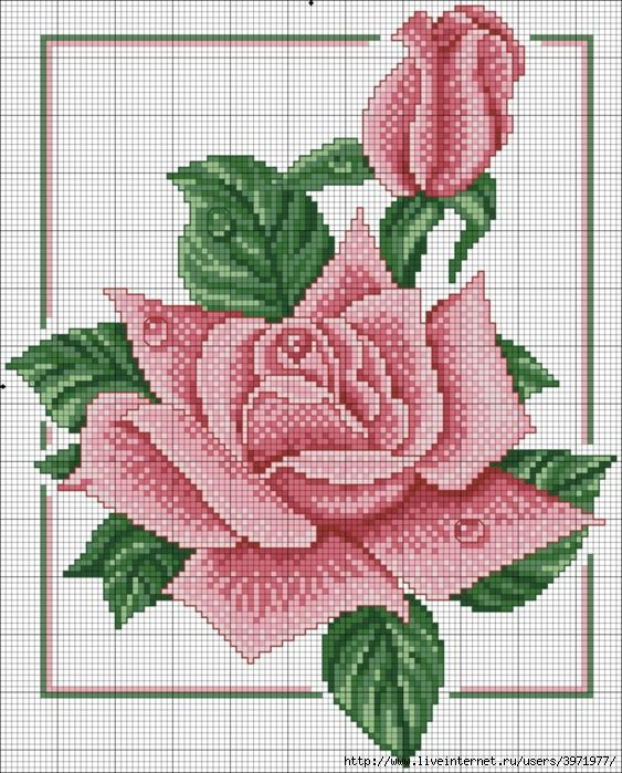40fdb875f85c23e4075cf675b24d6726.jpg (563×699)
