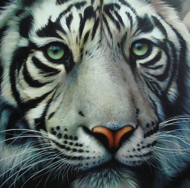 """Tigre blanco / White Tiger"", óleo sobre lino / oil on linen …"