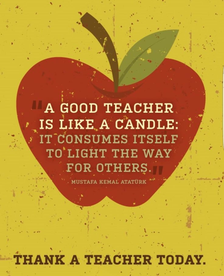 "Michie states, ""Part of what teaching is about: willingness to explore with kids, to reach with them, to follow a dimly lit path together, often unaware of the dazzling surprises that may wait around the bend"" (68). This, I believe, is the role of a great teacher."
