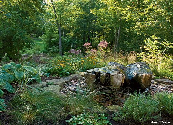 Certified Wildlife Habitat Eco Friendly Backyard Increases
