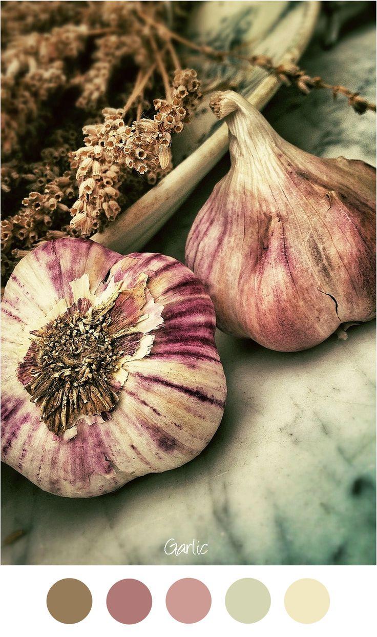 Knoflook - Zachte tinten voor een warm interieur. Groen - paars - roze en bruin