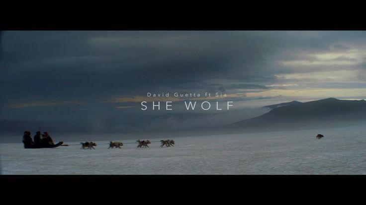 "David Guetta ft Sia ""She Wolf"" on Vimeo"