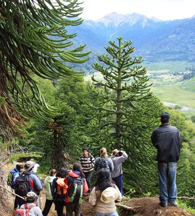 """Lonquimay. La comunidad pehuenche comparte con los turistas la experiencia de las """"veranadas"""" en la zona centro-sur de Chile. www.thisisChile.cl"""
