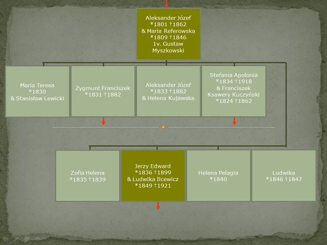 Dzieje pomorsko-wileńskiej rodziny Guttów: Pomorsko-wileńska gałąź rodu - genealogia