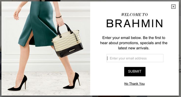 BRAHMIN pop up