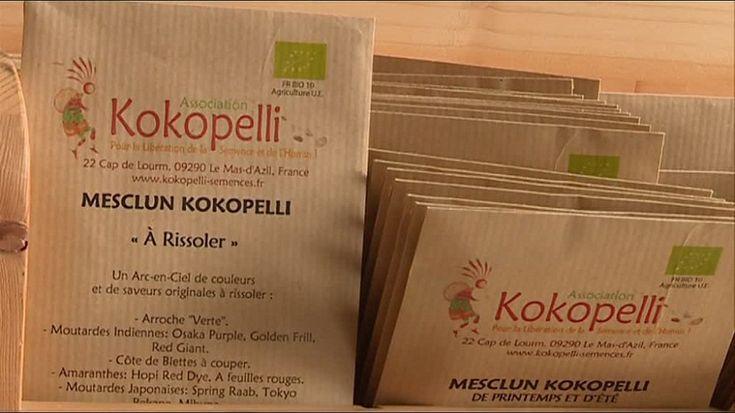 Depuis 18 ans, l'association Kokopelli se bat pour la libération des semences et tient tête aux semenciers géants. Un succès insolent, qui se joue depuis quatre ans maintenant en Ariège.