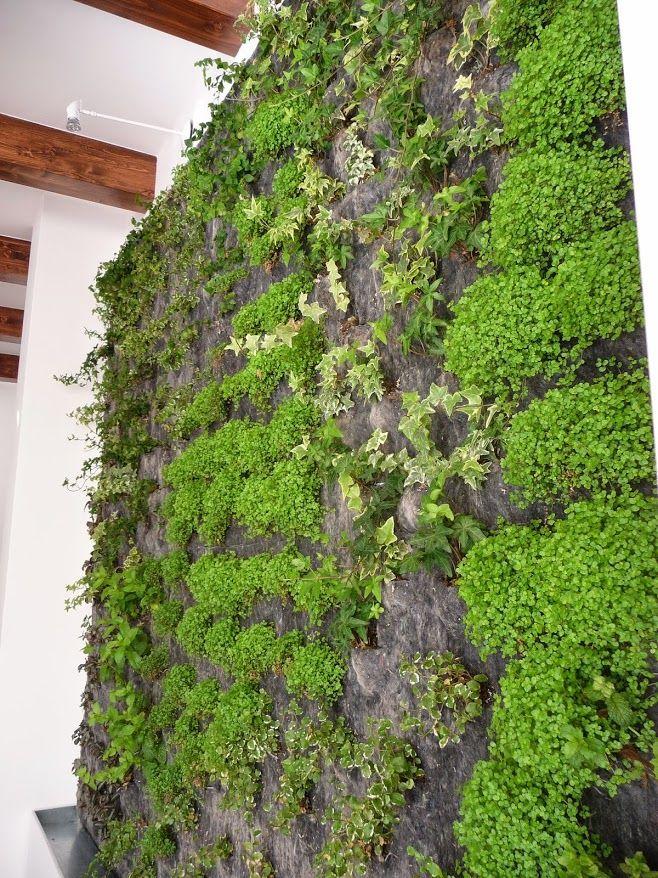 115 best jardines verticales images on pinterest gutter. Black Bedroom Furniture Sets. Home Design Ideas