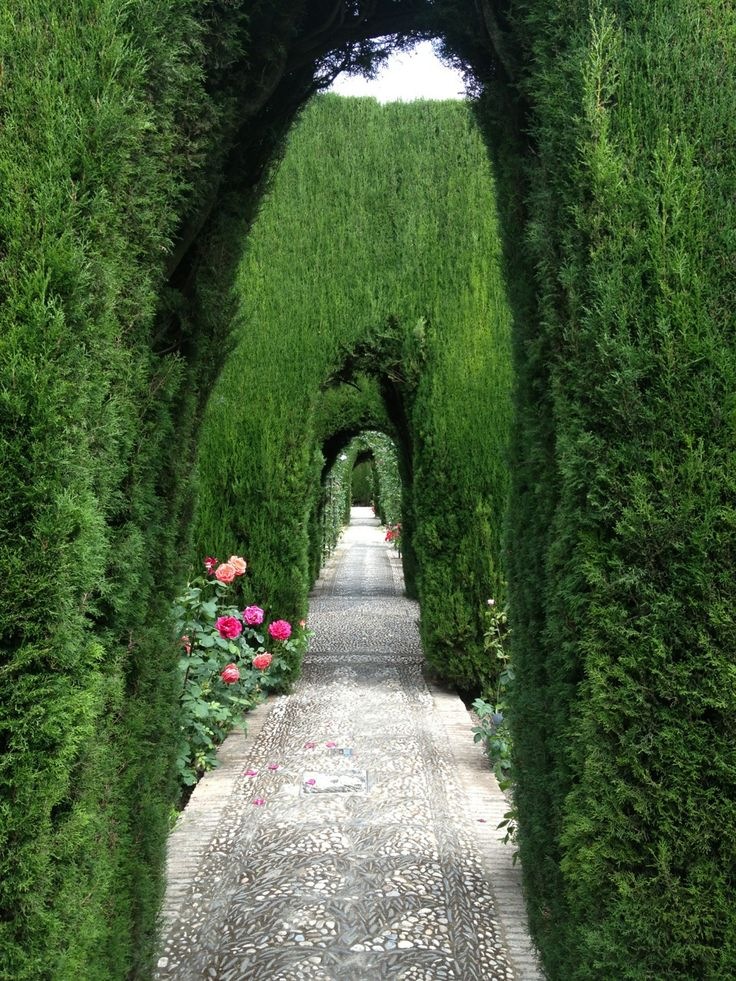 La Alhambra, Granada, España.... I took this same exact picture when I was there!!!! :') miss it so much