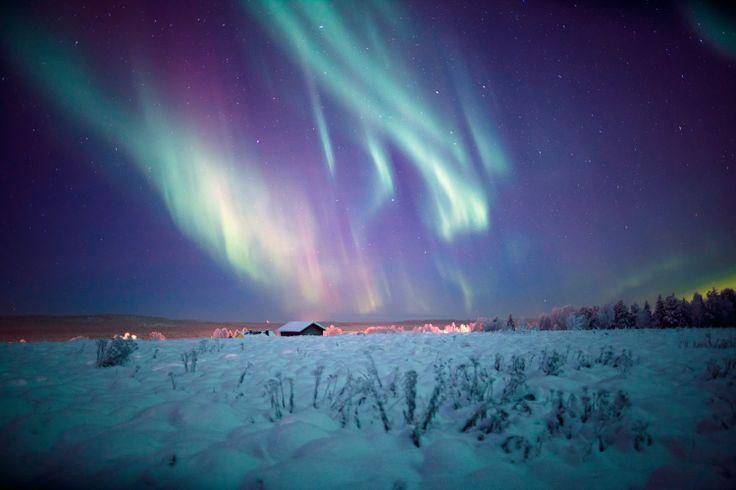 Northern Lights, Muonio, Finnish Lapland © Antti Pietikäinen
