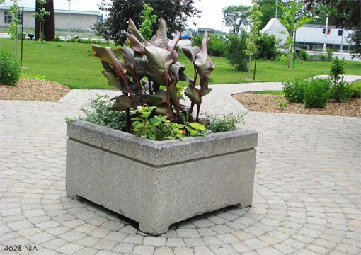 17 best images about planters la on pinterest concrete planters planters and trough planters - Casting concrete planters ...