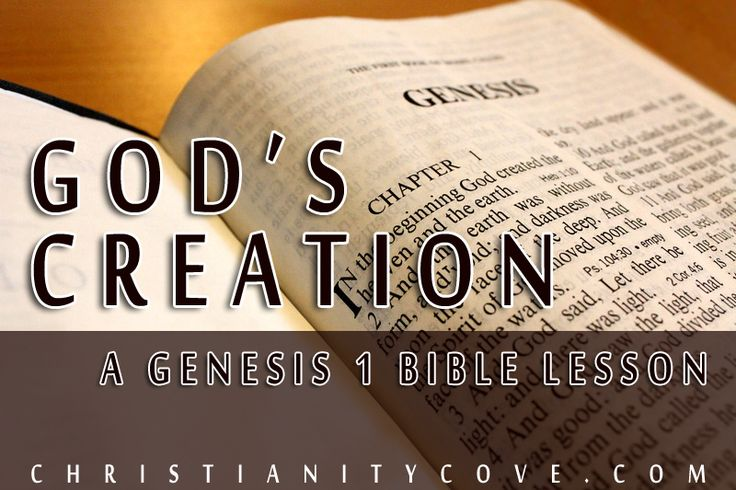 Bible Creation vs. Evolution: Do They Harmonize? A Summary