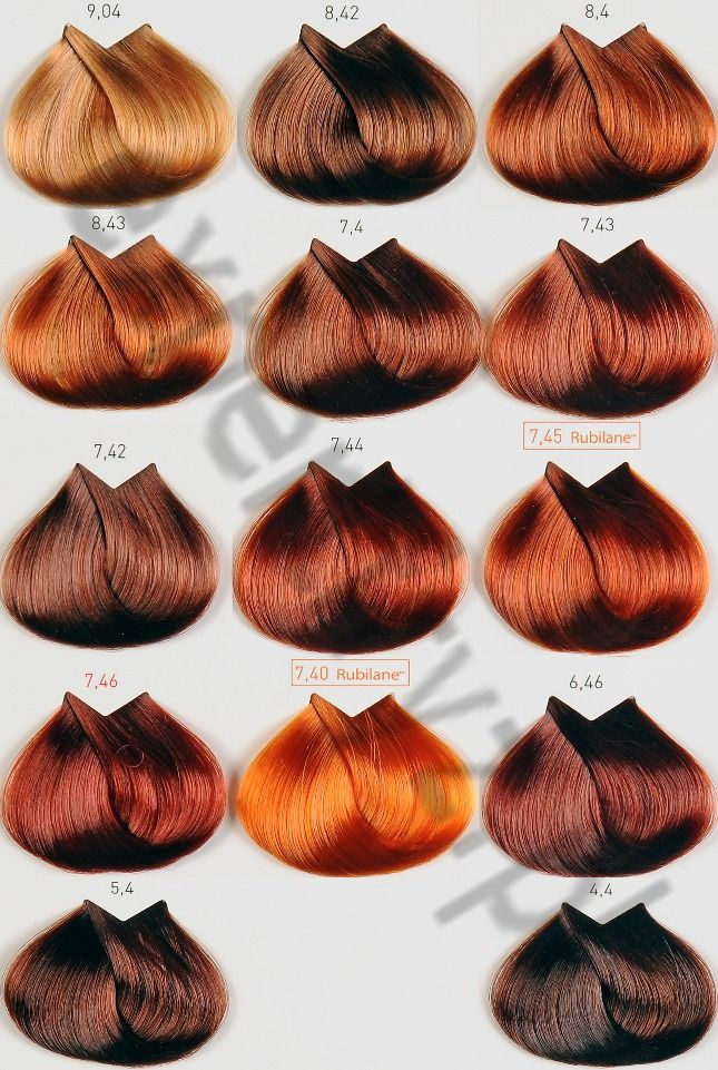Best 25+ Loreal hair color chart ideas on Pinterest Loreal hair - sample hair color chart