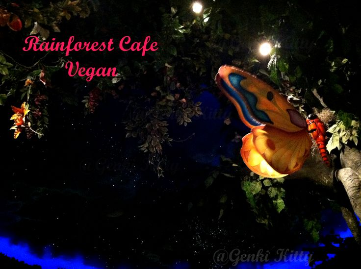 Eating Vegan at the Rainforest Cafe