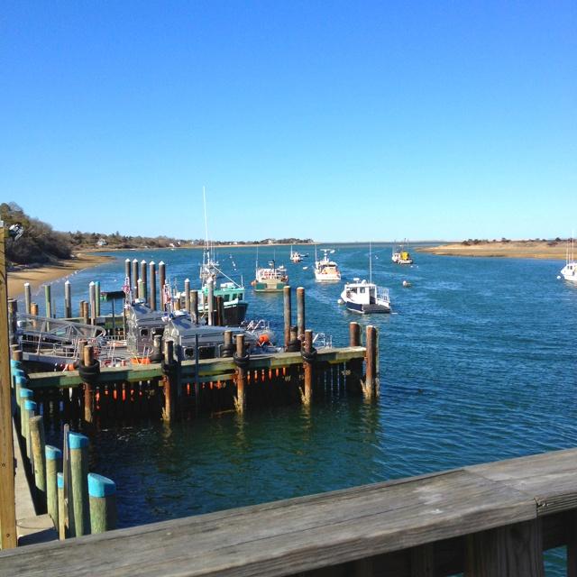 chatham fish pier massachusetts