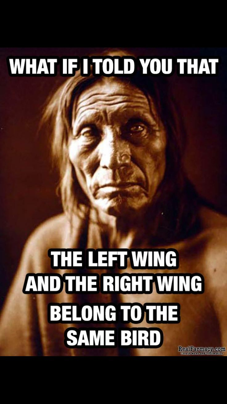 The bird is America and both wings are required to fly. United we stand, divided we fall.