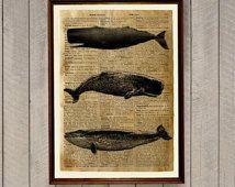 Wal-Poster nautische Dekor Meeresleben Drucken Wörterbuch Seite WA51