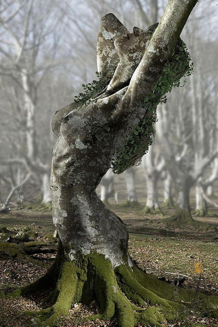 http://1.bp.blogspot.com/-28Uf0hJouj8/Ttf5enbRWJI/AAAAAAAAAHo/BZHdW3oUqag/s1600/natural+woman+from+tumblr.jpg