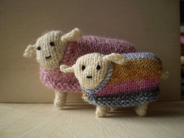 Sheep in sweaters - how cute is this?