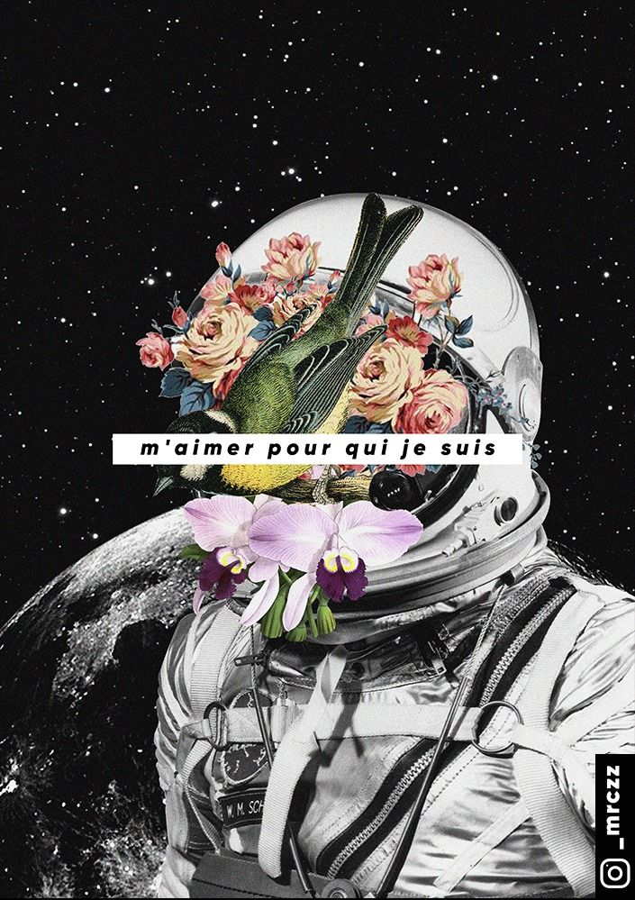 Collage With An Astronaut Bird And Flowers Space Background