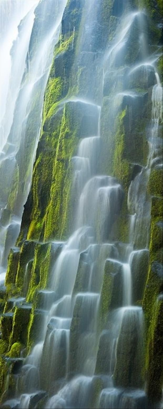 The pure glacial waters of Oregon's Proxy Falls flows over the moss covered columnar basalt. // Photo and caption by Ryan Hellard