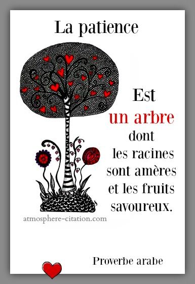 La patience est un arbre  Trouvez encore plus de citations et de dictons sur: http://www.atmosphere-citation.com/proverbe-arabe-2/la-patience-est-un-arbre.html?