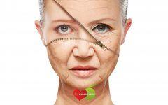 Os 10 Melhores Suplementos Anti Envelhecimento