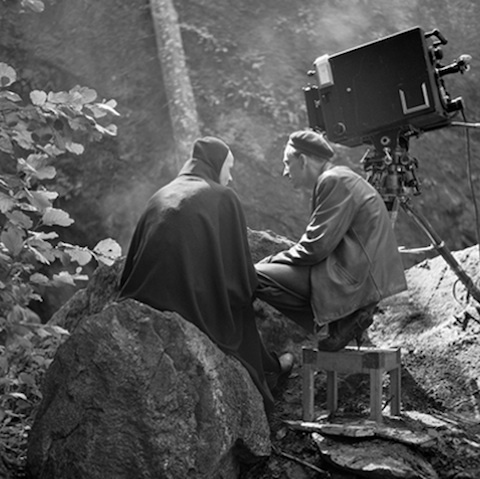 Bergman's The Seventh Seal