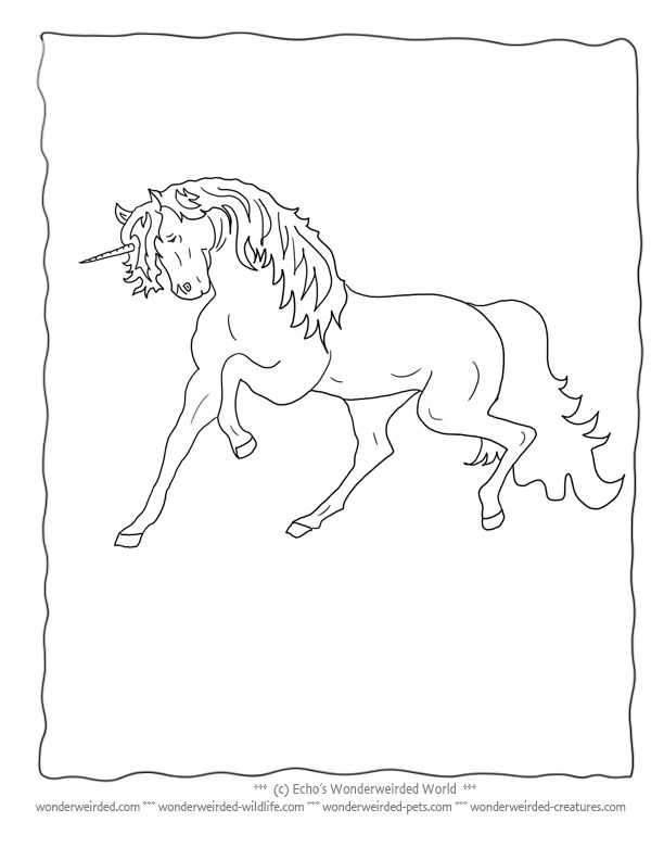 Realistic Unicorn Coloring Pictures Book FREE to print at