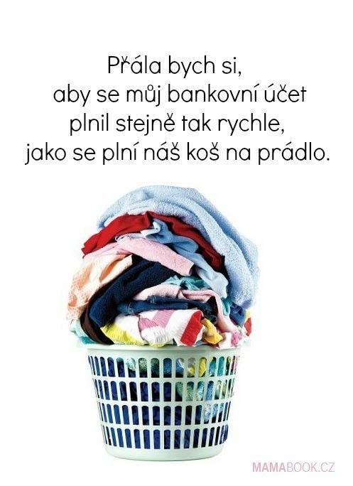 Přála bych si, aby se můj bankovní účet plnil stejně rychle, jako se plní náš koš na prádlo.