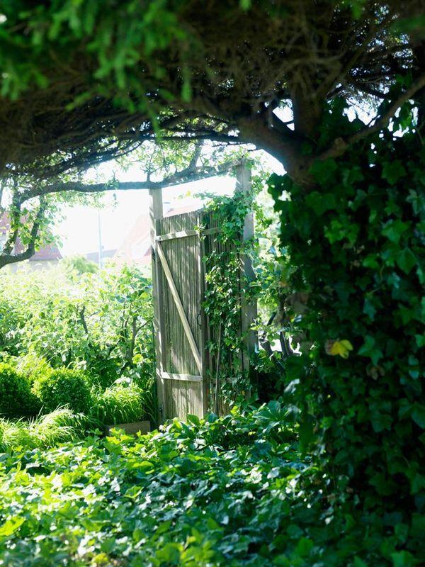3. Väggar av grönska | Det ser ut som om trädgården skulle kunna vara porten till Edens lustgård, men utanför grinden ligger ett helt vanligt villaområde. Hemligheten bakom djupet är frodigheten och kontrasten som bildas av olika gröna bladfärger. Här skapas väggarna av häckar, grind och murgröna /