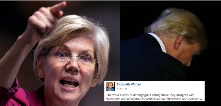 Senator Warren just declared war on Donald Trump -- just in time for the election.