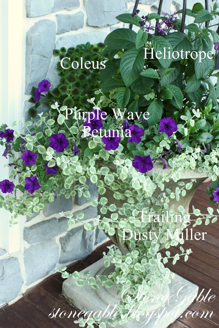 http://3.bp.blogspot.com/-RmuEpMIMgq8/T6UcGWrG9XI/AAAAAAAAQTk/KEC9pawwCe8/s1600/Summer+2011+front+door+planter+with+names.jpg