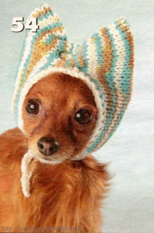 вязаные шапочки +для собак