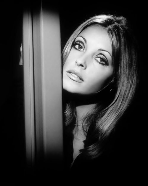 "Sharon Tate publicity still for ""Valley of the Dolls"", 1967."