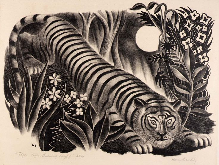 artistsanimals: Artist: Harry Brodsky (1908-1997)Title: Tiger, Tiger Burning BrightDate: not given Medium: LithographSize: N.A.Source: Smithsonian American Art Museum