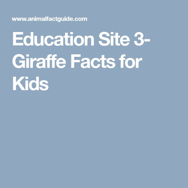 Education Site 3-   Giraffe Facts for Kids
