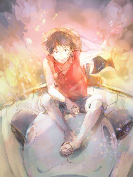 Happy Birthday to our future Pirate King, Monkey D. Luffy05/05/2017
