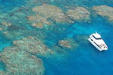 Great Barrier Reef Tour ab Cairns