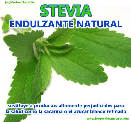 stevia propiedades naturales