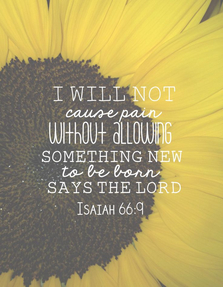 A personal favorite from my Etsy shop https://www.etsy.com/listing/260220051/isaiah-669-i-will-not-cause-pain-without