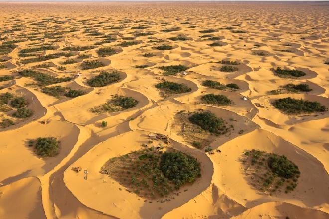 Adjder oasis, Timimoun, Algeria | Djazair | Pinterest ... Oasis Geography