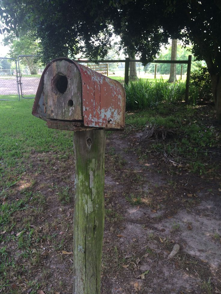Old Mailbox Birdhouse Bird House Feeder Bird Houses