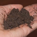 The soil should be dark, sweet smelling and break apart with a gentle touch.