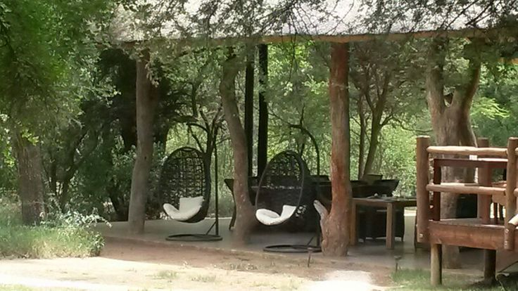 Egg chairs for chill time
