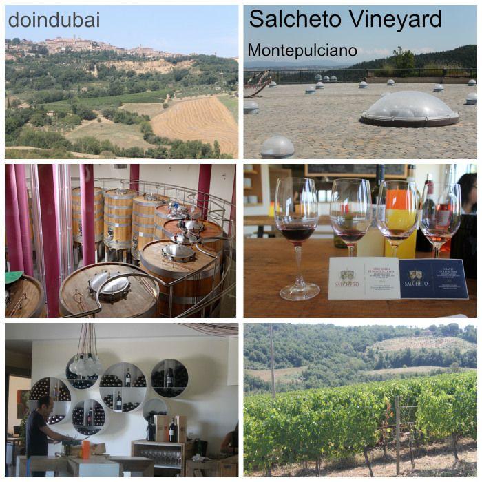The Salcheto Wine Estate Montepulciano ITALY
