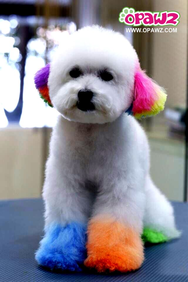 7 best WoW Grooming! images on Pinterest