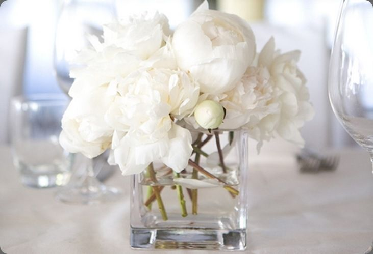 This is exactly what I want the centerpieces to look like. Super simple, blooming flowers and clear glass.