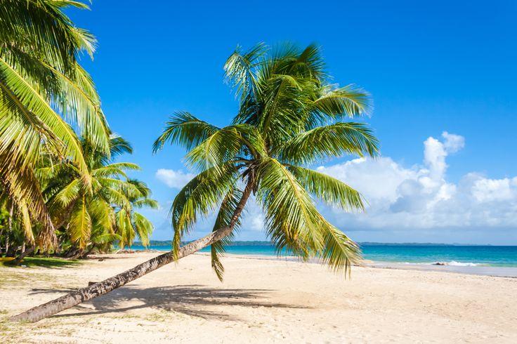 Topp saker att göra på #Madagaskar: vila på stranden Ile Saint Marie