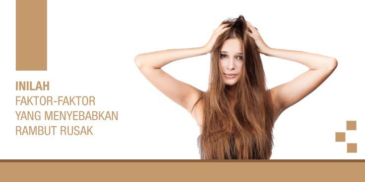 Rambut tidak bisa lepas dari sebuah masalah. Masalah kerusakan rambut akan mempengaruhi percaya diri seseorang dan mengurangi penampilan. Sangat tidak nyaman sekali jika rambut yang kita miliki men…