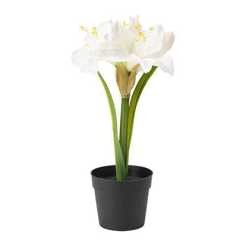 IKEA - FEJKA, Topfpflanze, künstlich, Naturgetreue, künstliche Pflanze. Wirkt immer frisch.